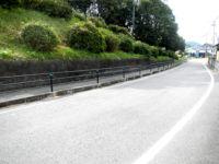 横断防止柵